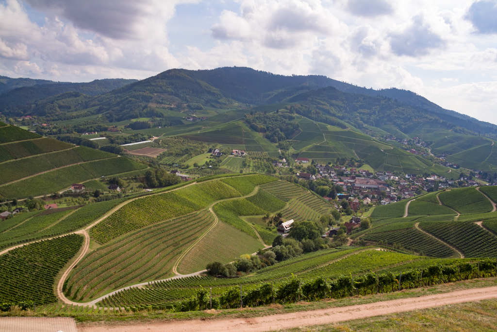 Courbes du Staufenberg